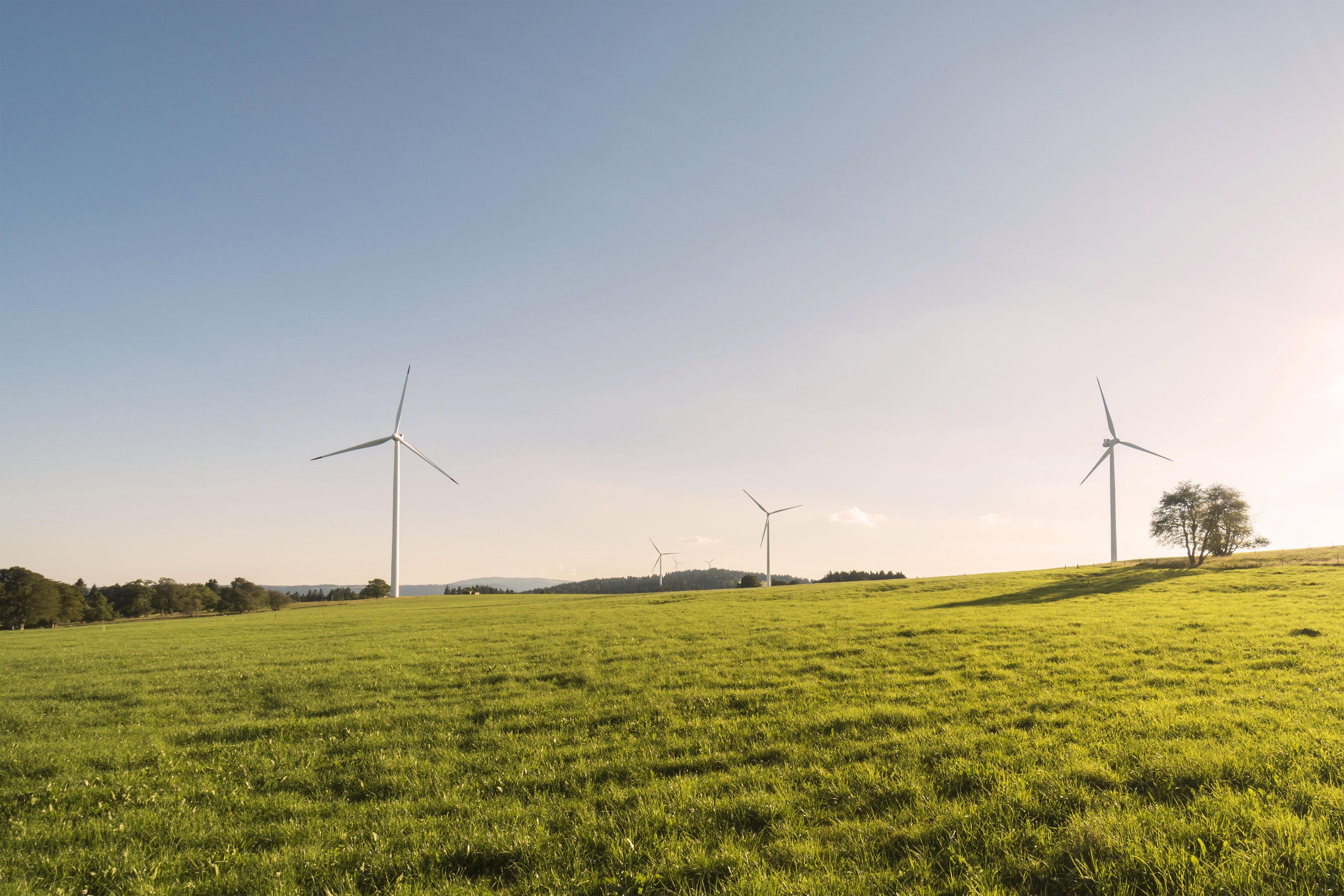 Windkraftwerk Generatoren auf einer grünen Wiese mit blauem Himmel bei Abendsonne