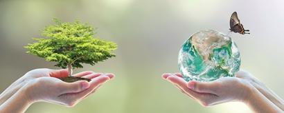 Umweltfreundliche Tarife