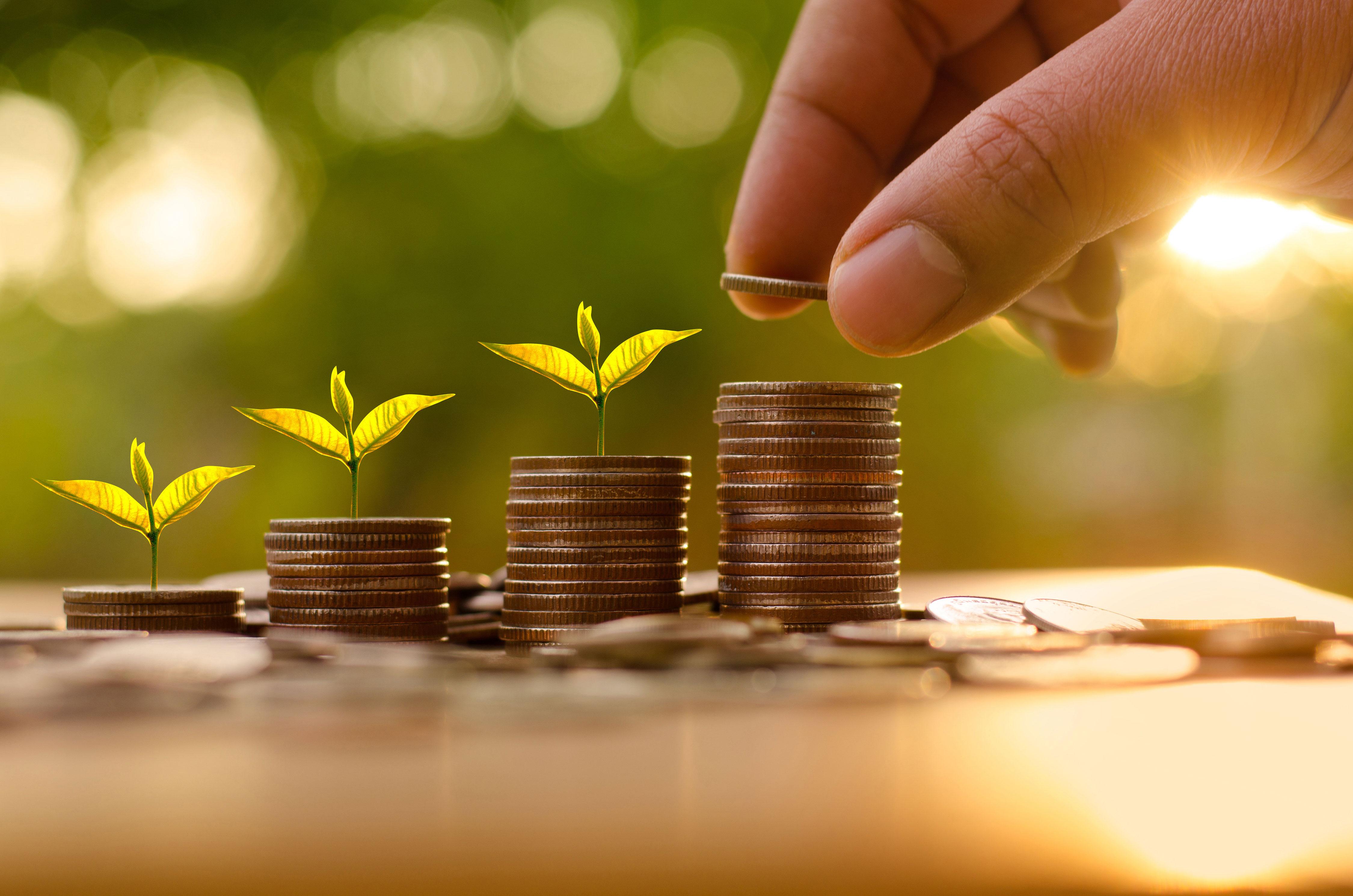 Hand stapelt Münzen auf Tisch im Garten, Keimlinge wachsen aus Münzen
