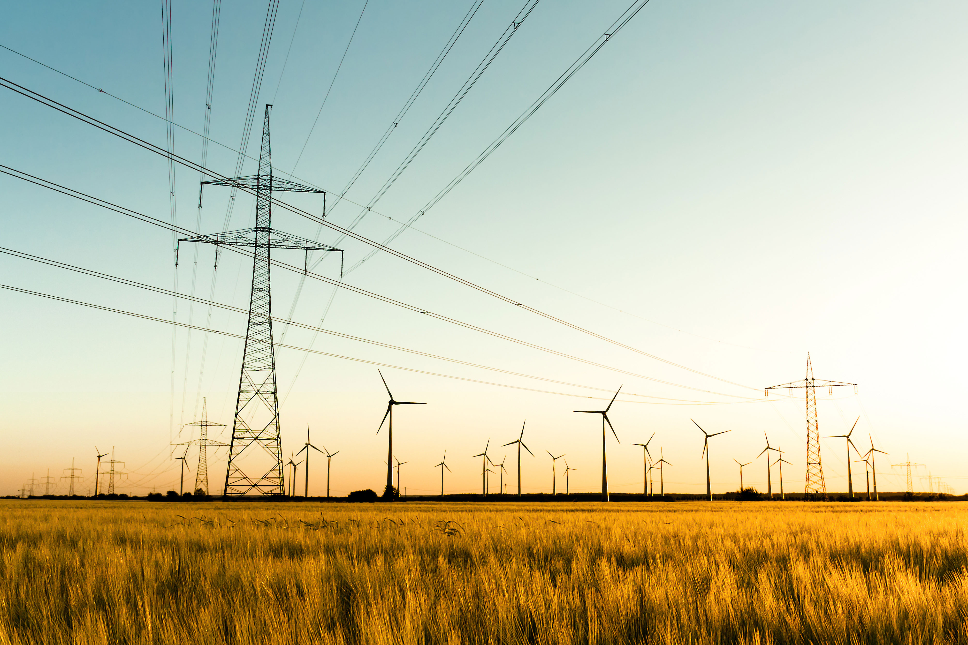 Strommasten, Kornfeld und Windräder im herbstlichen Gegenlicht