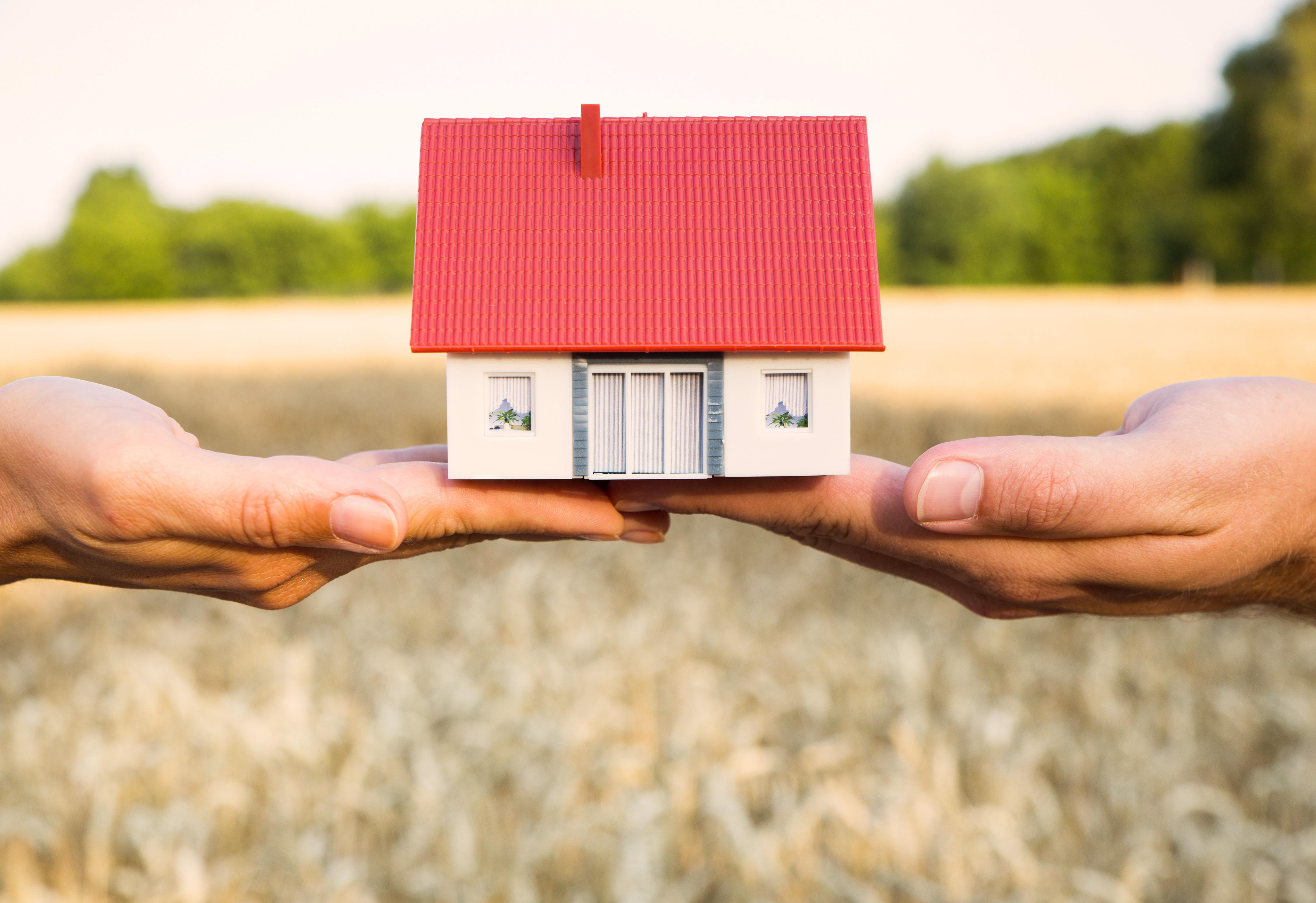 Miniaturhaus auf Händen vor Kornfeld