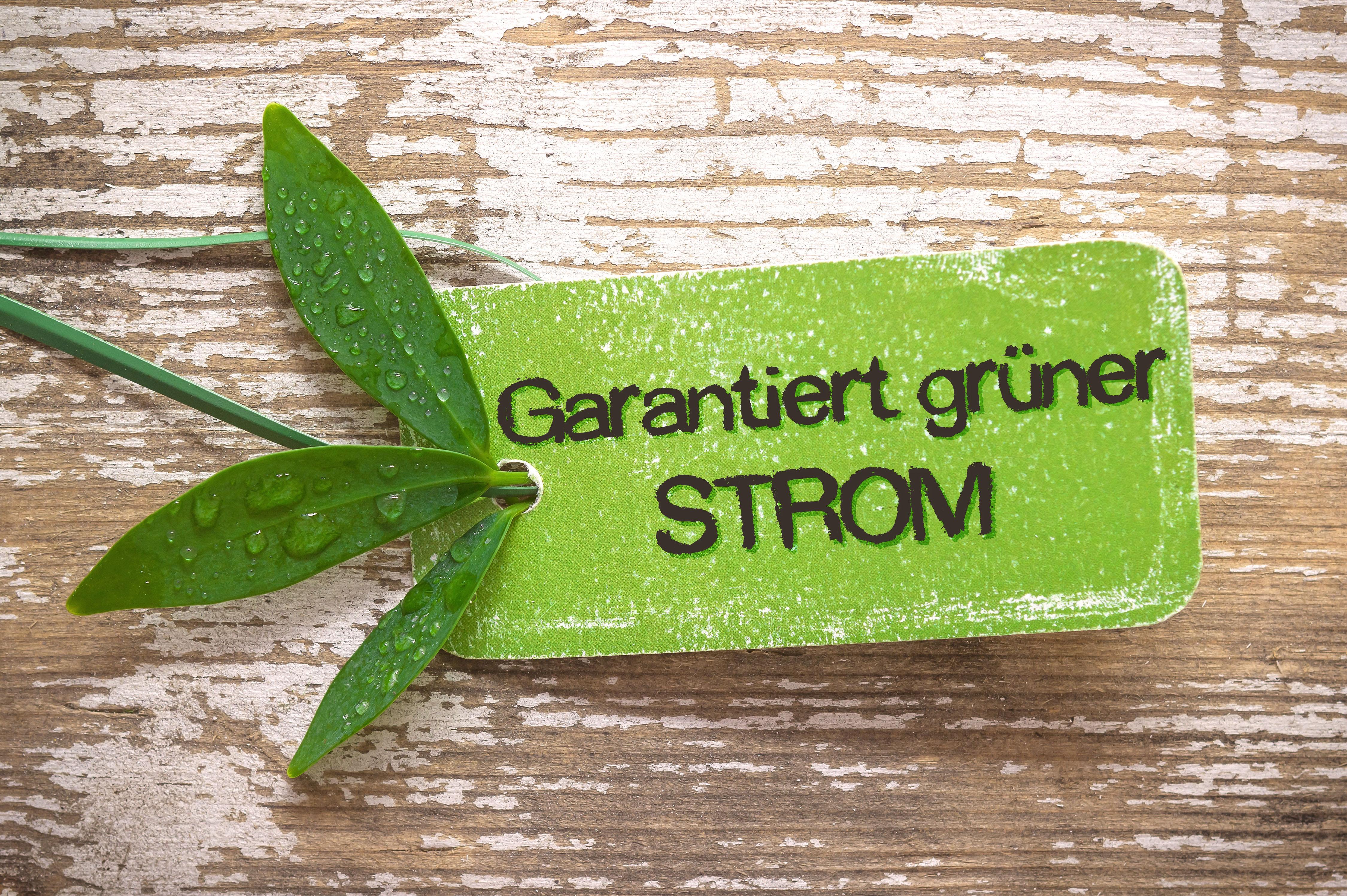 Label Garantiert grüner Strom