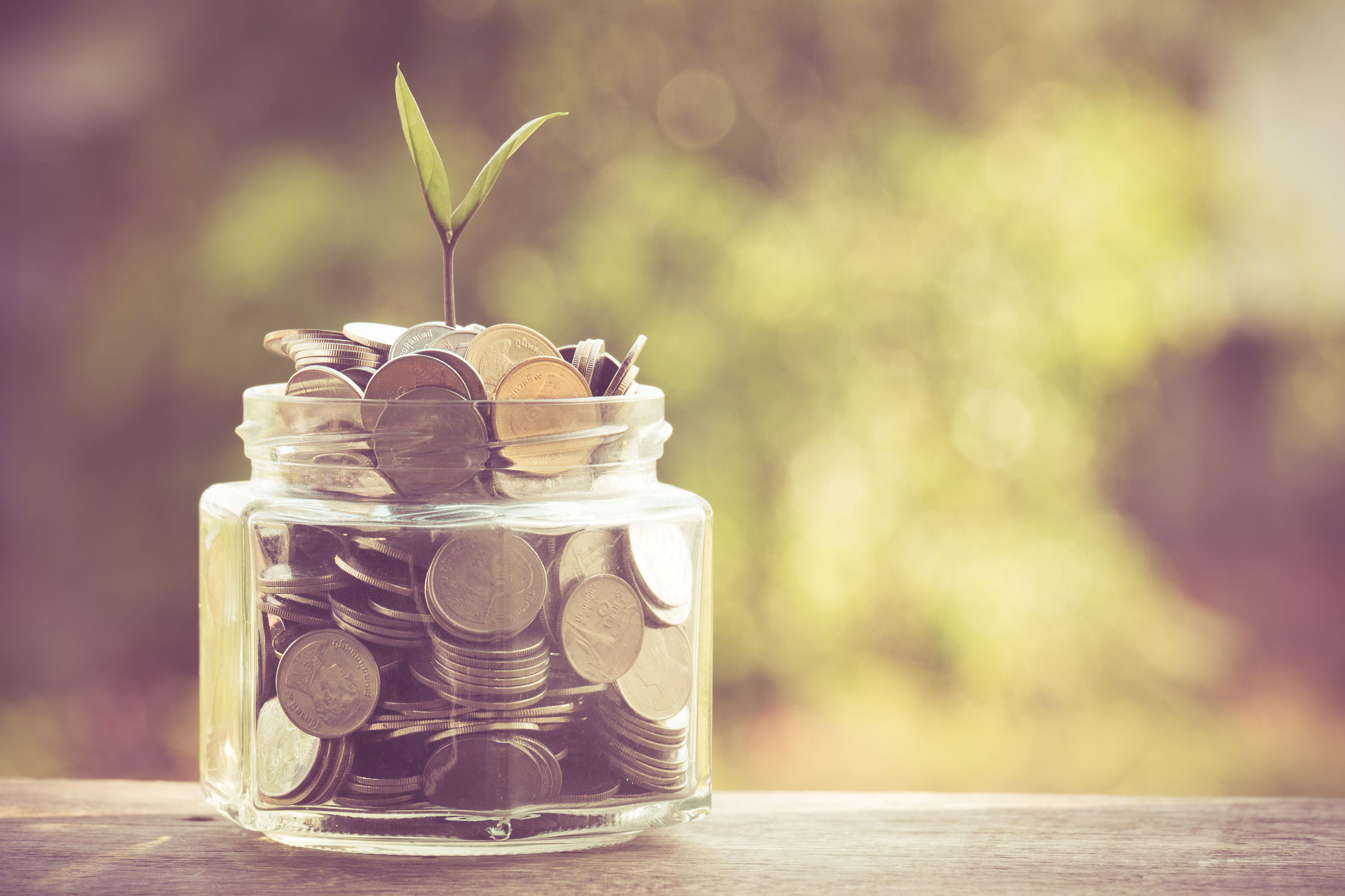 Keimling wächst aus Glas voll mit Münzen